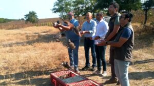 Enez'de 200 keklik doğaya salındı